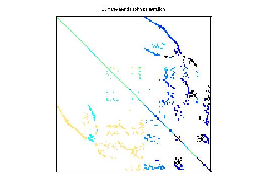 Dulmage-Mendelsohn Permutation of Bai/qh1484