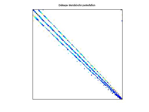 Dulmage-Mendelsohn Permutation of Bai/rw496