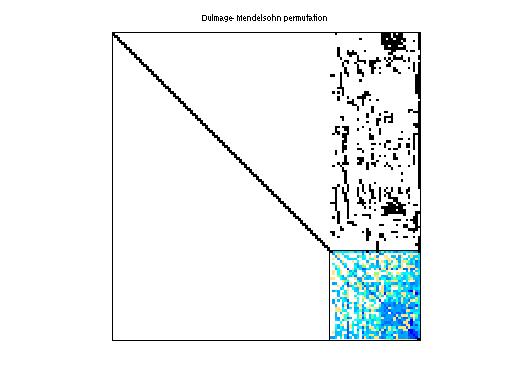 Dulmage-Mendelsohn Permutation of Bomhof/circuit_2