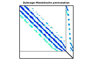 Dulmage-Mendelsohn Permutation of Goodwin/Goodwin_010