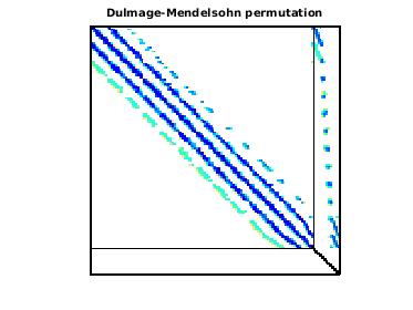 Dulmage-Mendelsohn Permutation of Goodwin/Goodwin_013