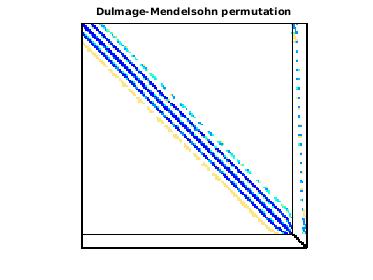 Dulmage-Mendelsohn Permutation of Goodwin/Goodwin_023