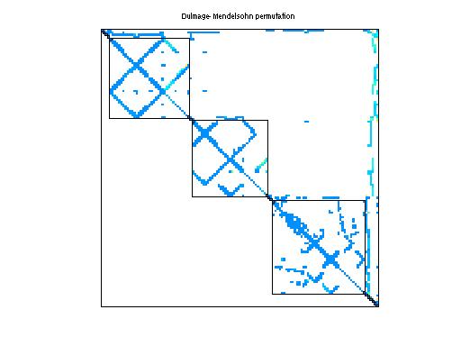 Dulmage-Mendelsohn Permutation of Mallya/lhr11c