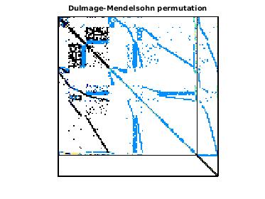 Dulmage-Mendelsohn Permutation of PowerSystem/power197k