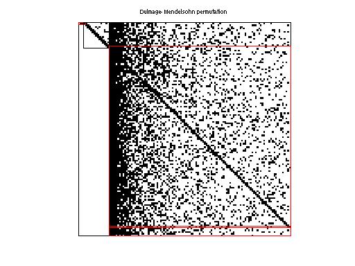 Dulmage-Mendelsohn Permutation of Priebel/145bit