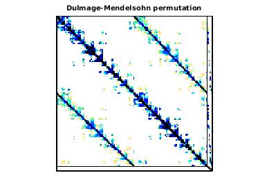 Dulmage-Mendelsohn Permutation of TAMU_SmartGridCenter/ACTIVSg10K
