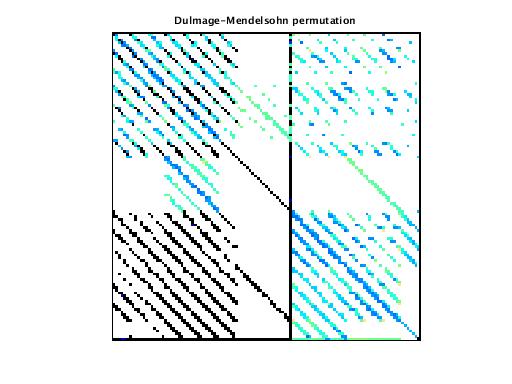 Dulmage-Mendelsohn Permutation of VDOL/reorientation_1