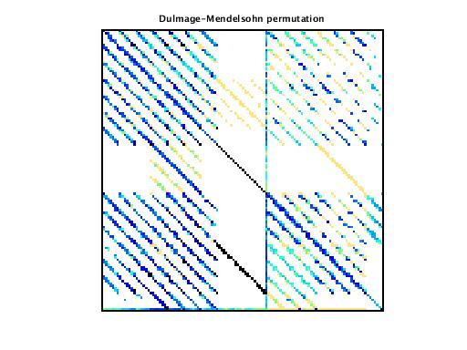 Dulmage-Mendelsohn Permutation of VDOL/reorientation_2