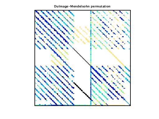 Dulmage-Mendelsohn Permutation of VDOL/reorientation_4