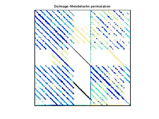 Dulmage-Mendelsohn Permutation of VDOL/reorientation_6