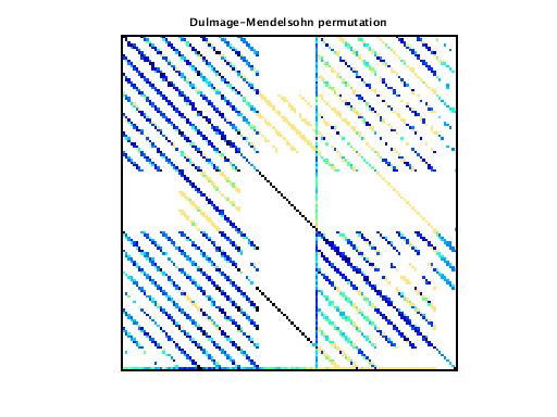 Dulmage-Mendelsohn Permutation of VDOL/reorientation_8
