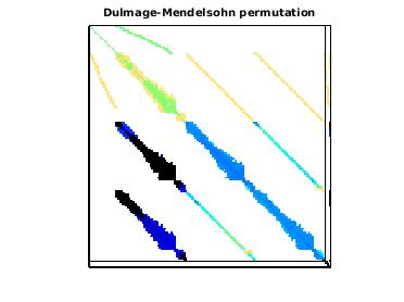 Dulmage-Mendelsohn Permutation of VLSI/dgreen