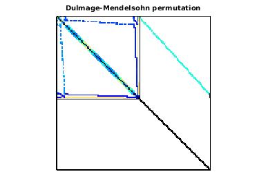 Dulmage-Mendelsohn Permutation of VLSI/ss1
