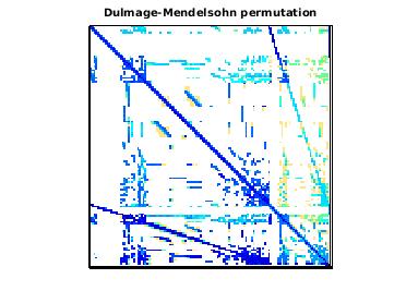 Dulmage-Mendelsohn Permutation of VLSI/stokes