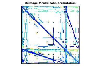Dulmage-Mendelsohn Permutation of VLSI/vas_stokes_2M