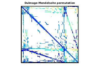 Dulmage-Mendelsohn Permutation of VLSI/vas_stokes_4M